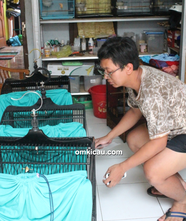 Breeding kenari JrC BF Jakarta - Om Eka Juhrian