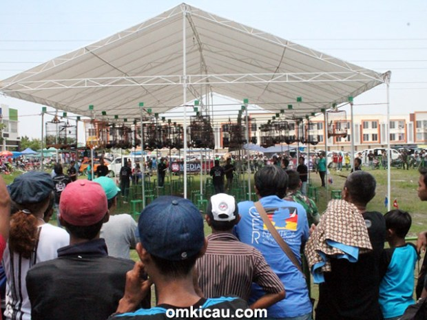 Road to Jayakarta Cup - kelas murai batu