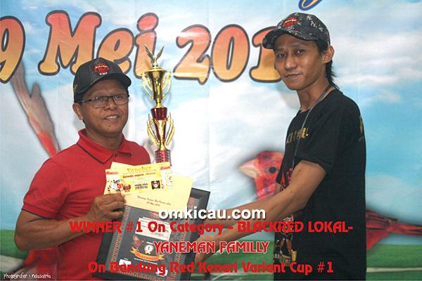 Juara Blackred Lokal