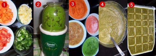 Cara membuat jus buah dan sayuran untuk pleci