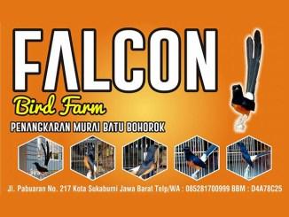 Iklan Falcon BF Sukabumi