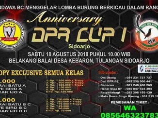 Anniversary DPR Cup I