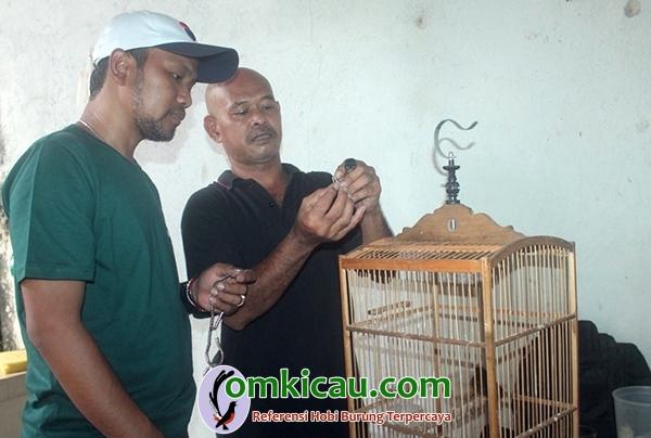 KAW Bird Farm