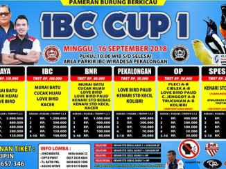 IBC Cup 1