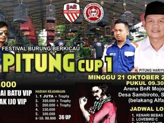 Pitung Cup I