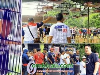 Muray Batu BnR Bird Champions 3