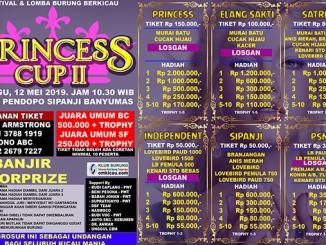 Princess Cup II