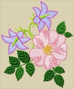 Create your own embroidery designs