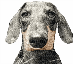 sfumato stitch embroidery, picture stitch embroidery, create your own embroidery