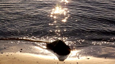 stock-footage-sparkling-star-burst-reflections-from-sunlight-hitting-and-reflecting-on-water