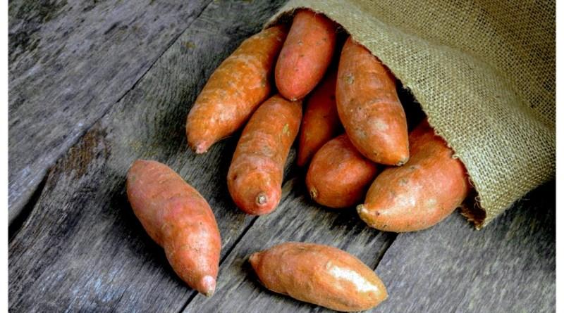 батат мешок картошка