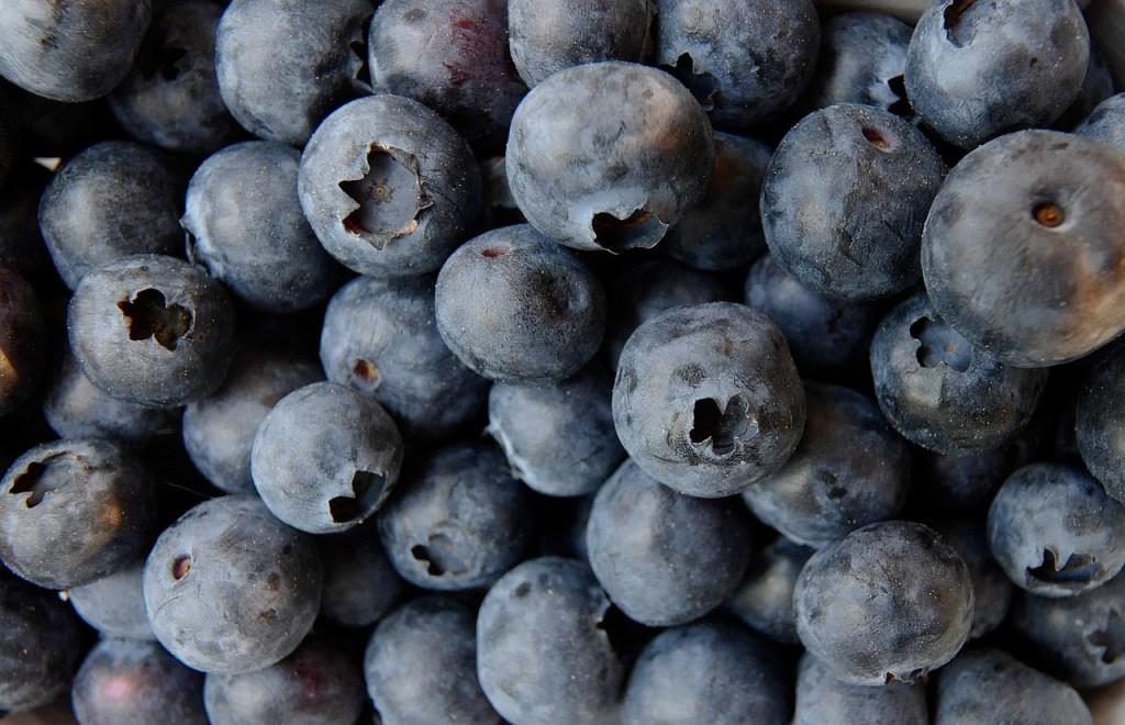 blueberry-3357568_1280.jpg