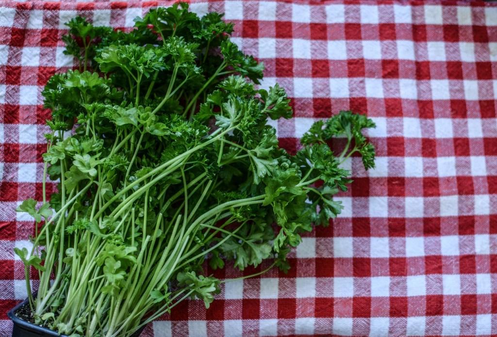 parsley-2874348_1280.jpg