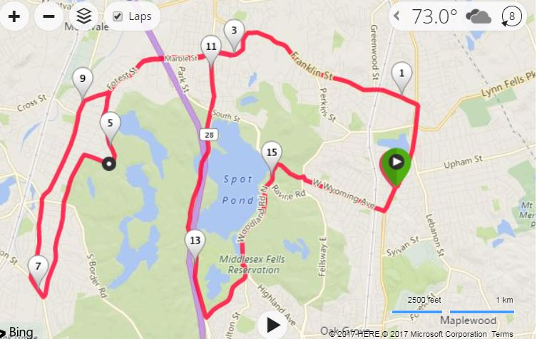 Sunday Long Run, marathon training