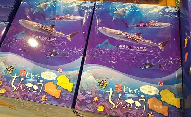 美ら海水族館お土産お菓子