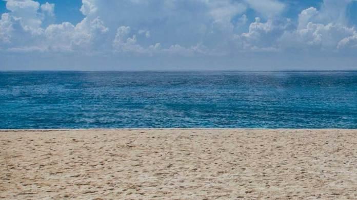 千葉で潮干狩り!ハマグリ多いのはどこの海岸?無料のおすすめはどこ?