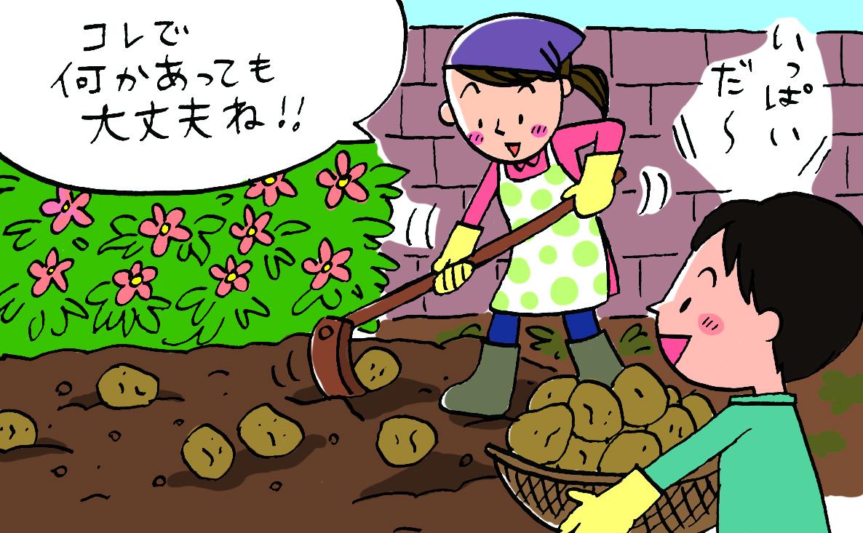 ジャガイモと飢饉の歴史