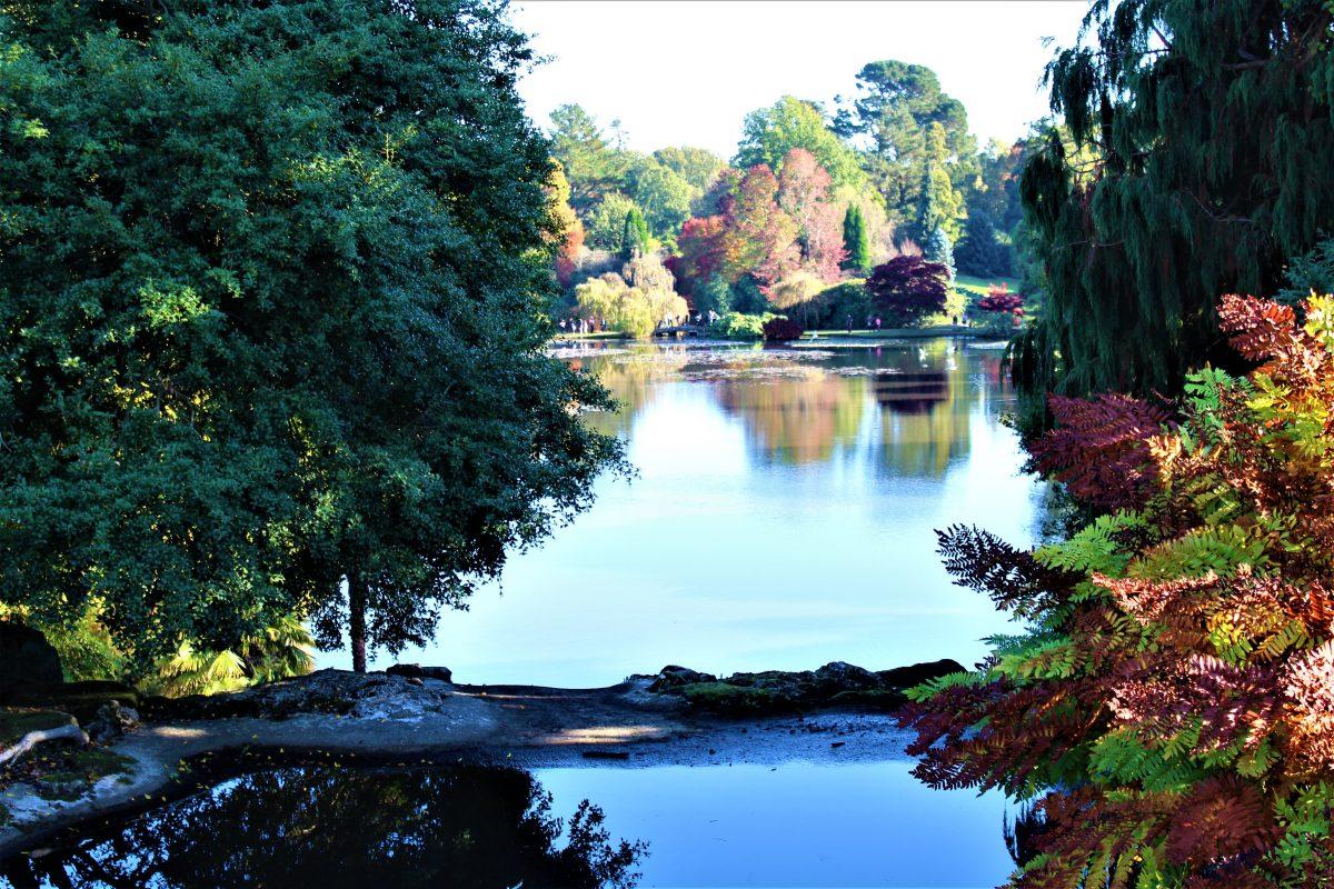 Lake at Shefield Park