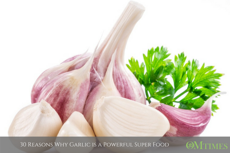 30 Reasons Why Garlic is a Powerful Super Food - OMTimes Magazine