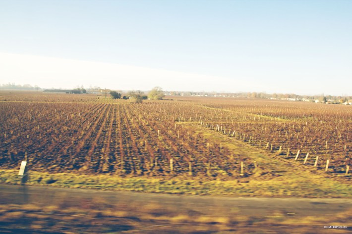 Around Bordeaux @omtripsblog