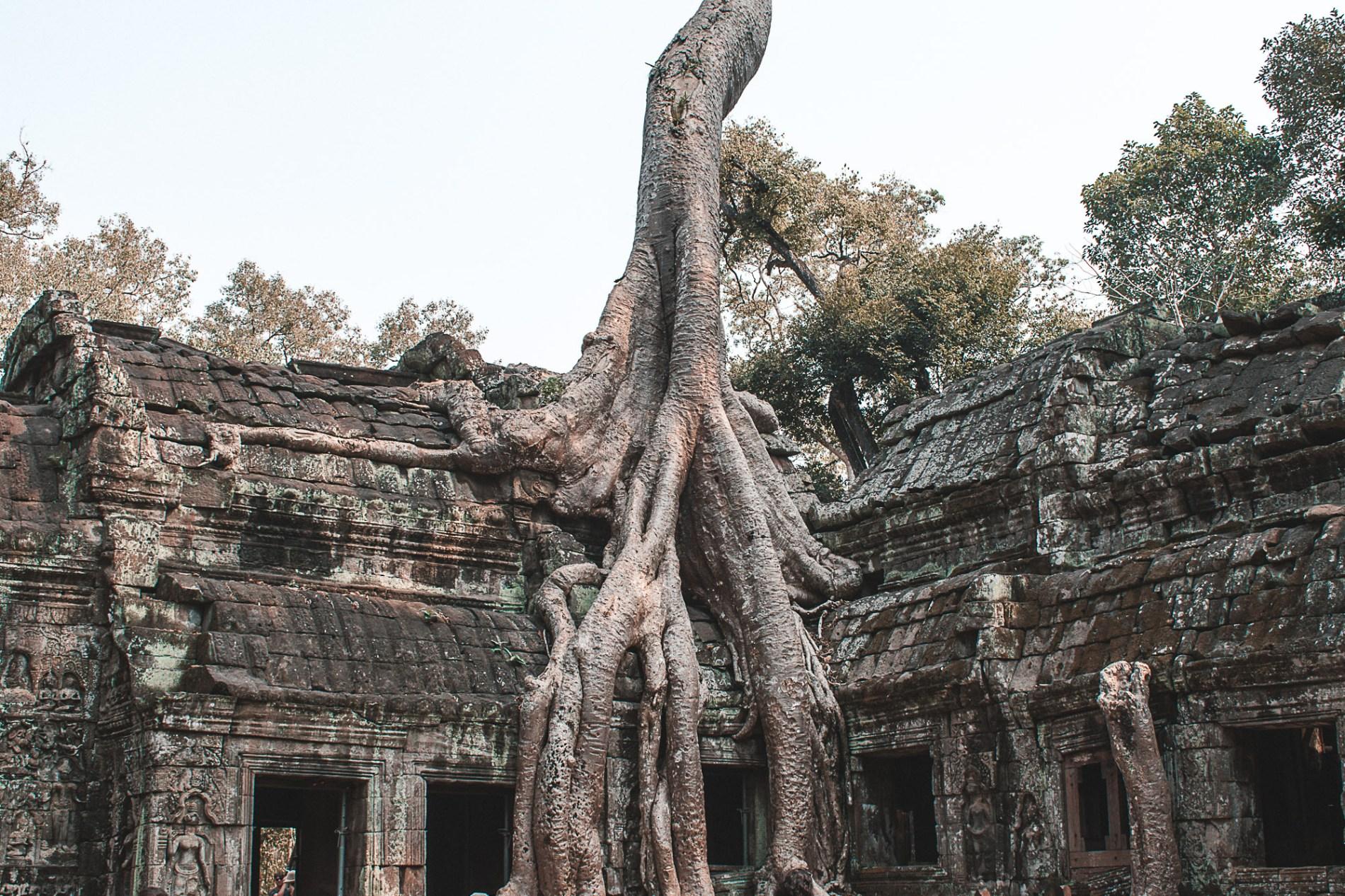 Custos viagem Siem Raep Camboja