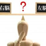 右脳で英語を学ぶ3つのメリット!七田式7+バイリンガルの効果的な学習方法とは