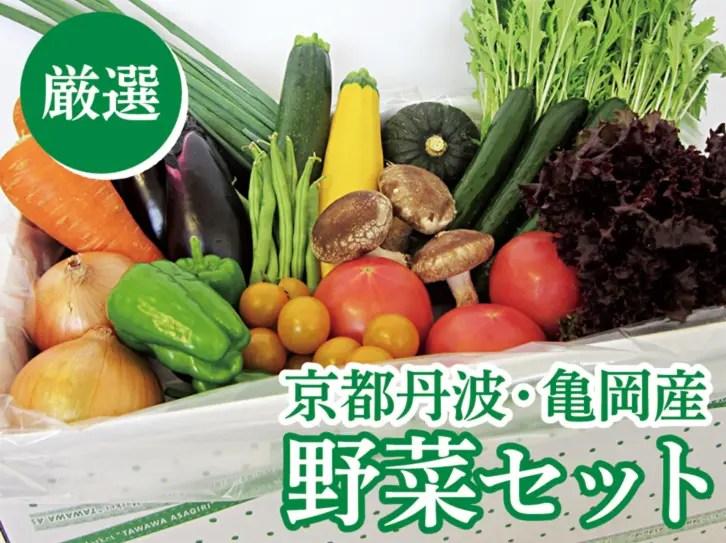 ふるさと納税 京都府亀岡市野菜セット