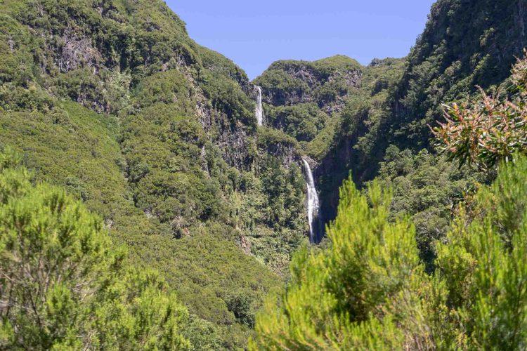 dicht bewachsende Felsen mit Wasserfällen in Rabacal