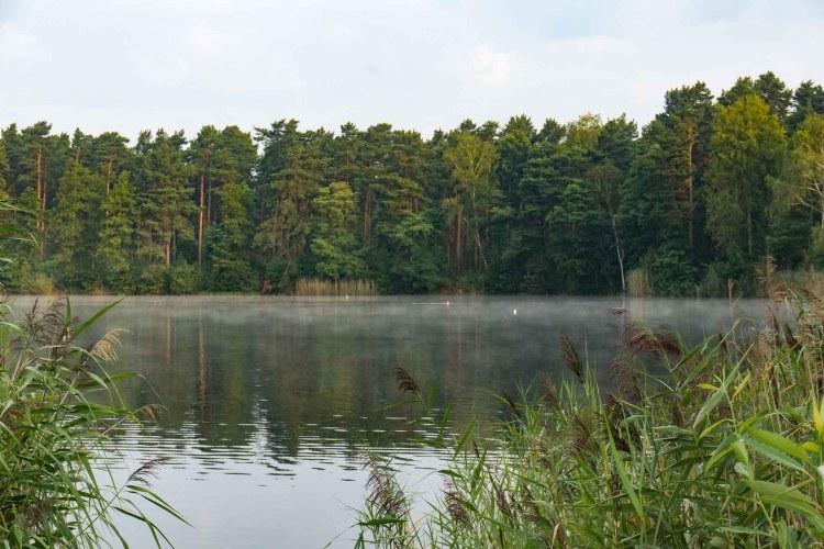 der Tonsee am Morgen