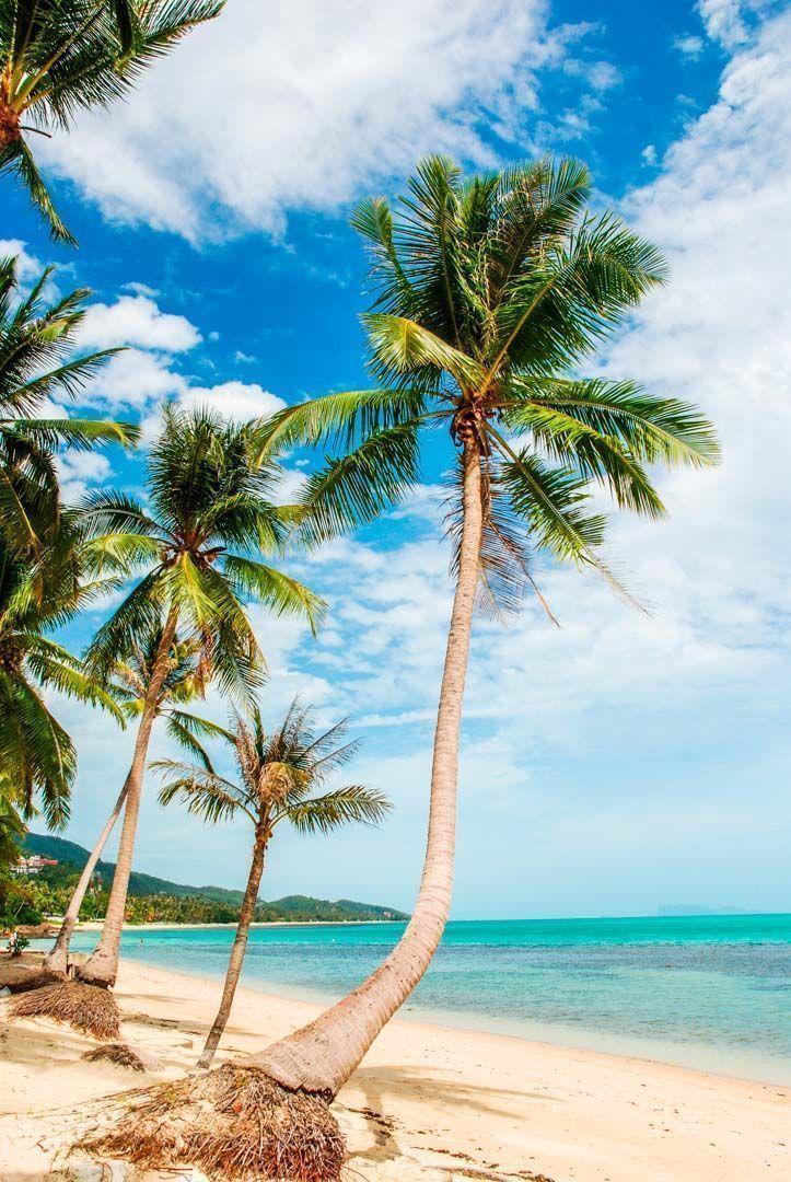 playas-islas-Golfo-Tailandia