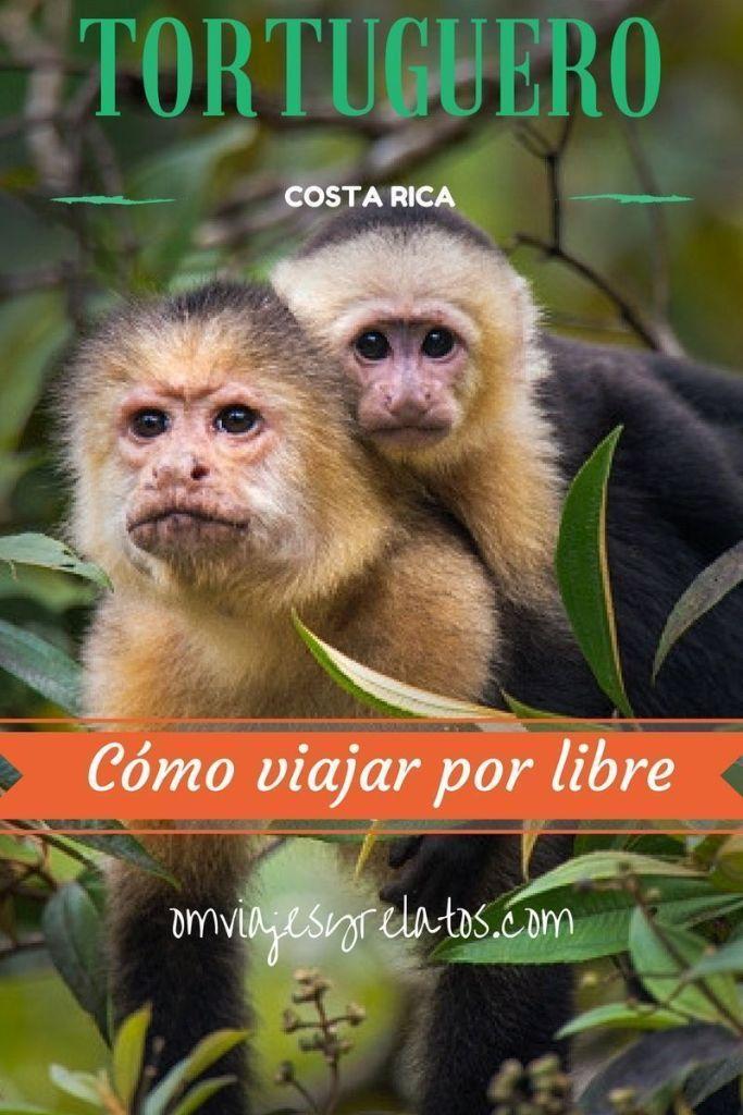 Costa-Rica-Blog-de-viajes