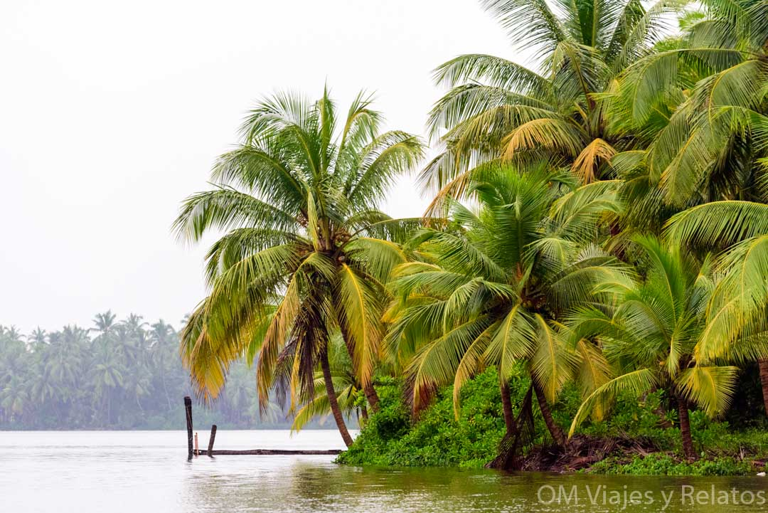 Alleppey-backwaters-India