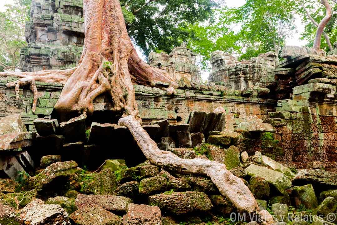Angkor-Camboya-temples