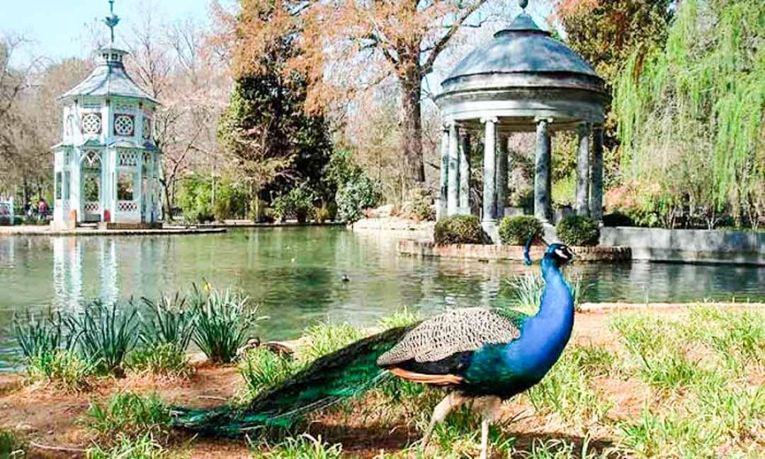 sitios-que-ver-cerca-de-Madrid-Aranjuez
