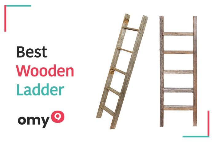 10 Best Wooden Ladder