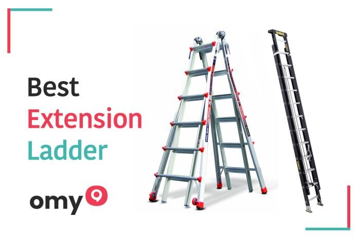 10 Best extension ladder