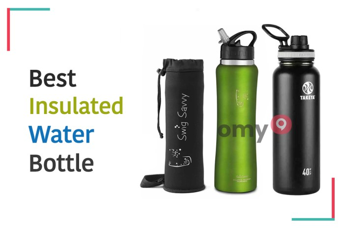 10 Best Insulated Water Bottle