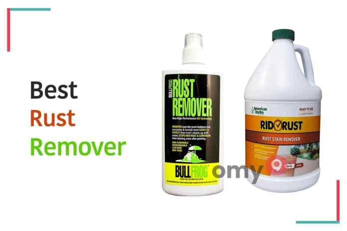 10 Best Rust Remover