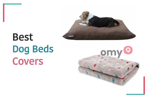 10 Best Dog Beds Covers