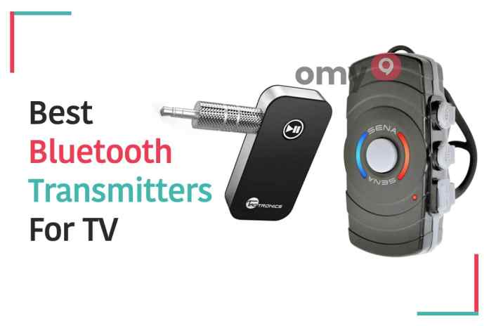 Best 10 Bluetooth Transmitters for TV