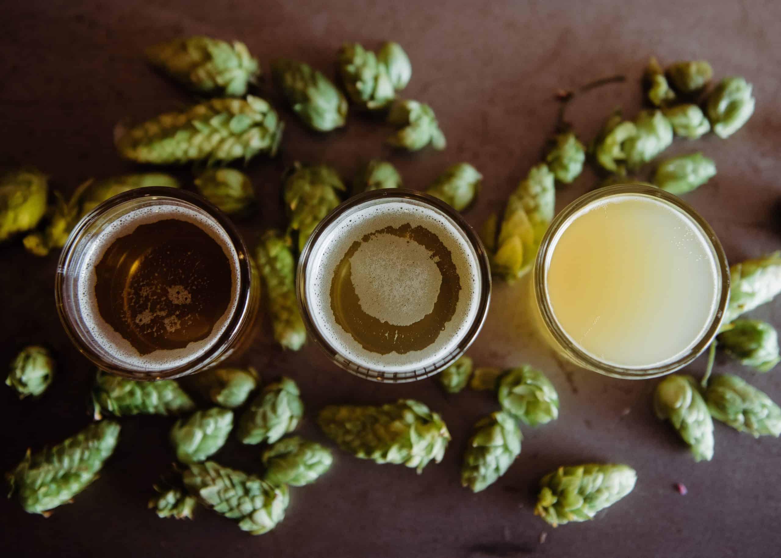 Hops & High IBU Beers