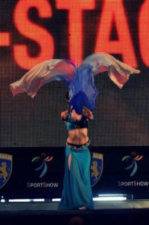sportshow 2013 (27)