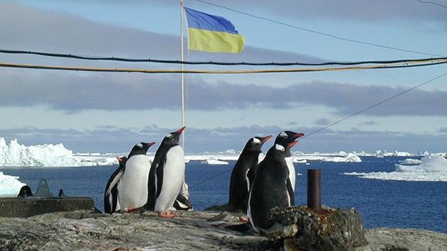 -станция-Пингвины.jpg