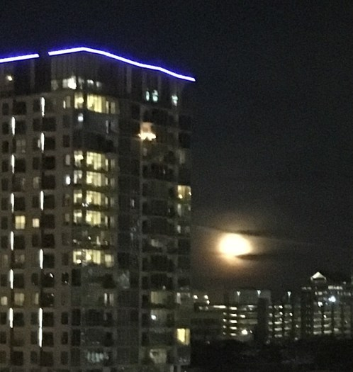 Super Blue Blood Moon rising over downtown Austin January 31, 2018
