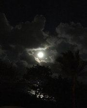 Saw a fantastic Super Snow Moon while moon gazing on Singer Island.
