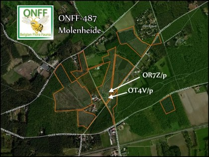 ONFF487_001