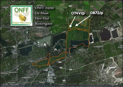 ONFF0490_001
