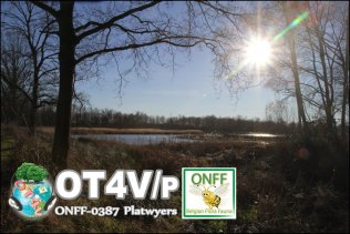 ONFF387_008