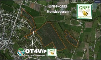 onff0531_001