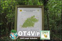 ONFF0096_005
